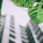 blur-bright-building-1143530